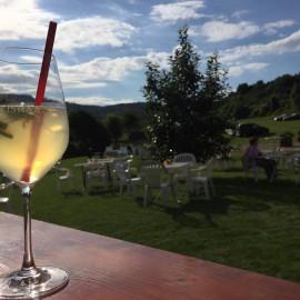 Impressionen Kruttenau Weinparty 2016